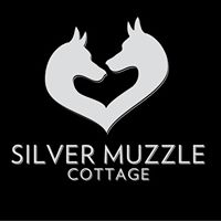 Silver Muzzle Animal rescue for senior dogs